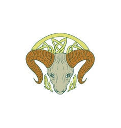 Ram head celtic knot vector
