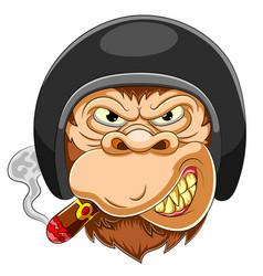 scary monkey wearing helmet racer vector image