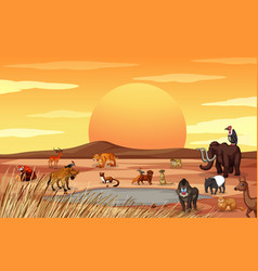 Scene with animals in savannah desert vector