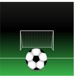 Soccer ball on field with vector