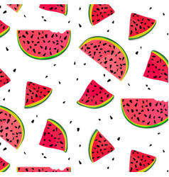 watermelon parts food slices red summer vector image