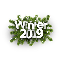 winter 2019 background with fir branches and vector image