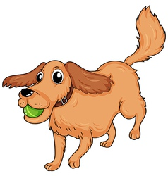 A dog playing with the ball vector image vector image