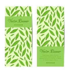 banners cards set Green leaves pattern vector image