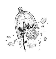 hand drawn broken wild rose in view of hands vector image
