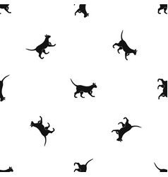 Cat pattern seamless black vector
