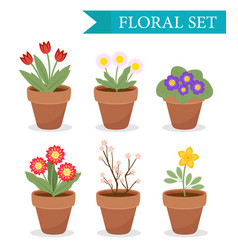 flower pot with different flowers set flat style vector image