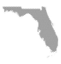 halftone grey florida map vector image