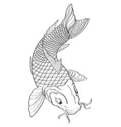 Koi Fish2 vector