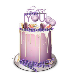 Lavender cake with fig fruits on top vector