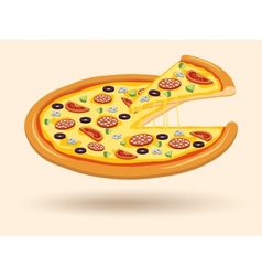 Meat cheese pizza symbol vector