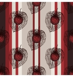 Seamless vertical pattern with physalis seed vector
