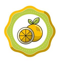 sticker orange fruit icon stock vector image