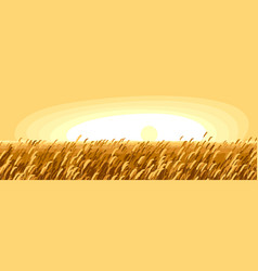 Wheat field scenic tranquil and calm landscape vector