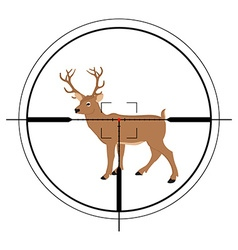 Deer hunting targer vector image