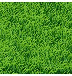 Background green grass vector
