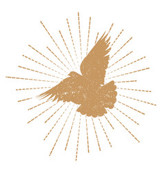 dove logo design vector image