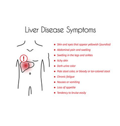 Liver disease symptoms infographic young vector