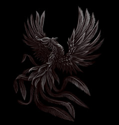 phoenix black and white graphic digital drawing vector image