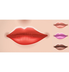 Set of big lips vector image
