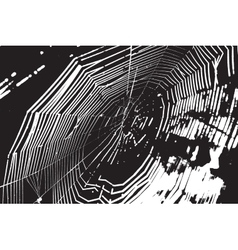 Spider Web Overlay vector