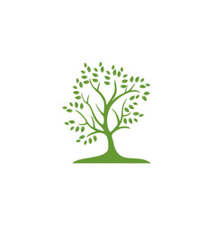tree green logo vector image