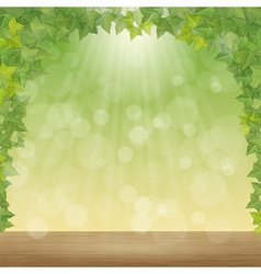 Leaves and sun rays vector