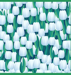 white fresh tulips seamless background abstract vector image