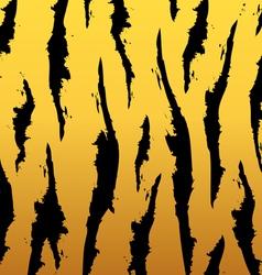 Tiger pattern vector image