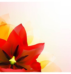 Borders Of Red Tulips And Pink Blur vector image vector image