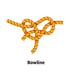 Bowline knot bright colorful how-to guide on vector