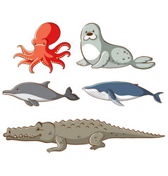 Isolated picture sea animals vector