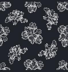 seamless pattern with hand drawn chalk iris vector image