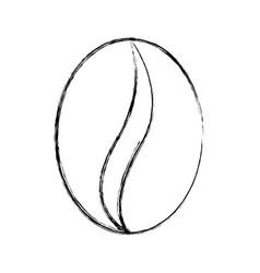 sketch draw coffee bean cartoon vector image