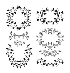 Elegant floral elements with branches and leaves vector image vector image