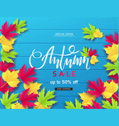 autumn sale poster with colorful leaves vector image
