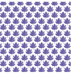 background purple leaves maple foliage pattern vector image