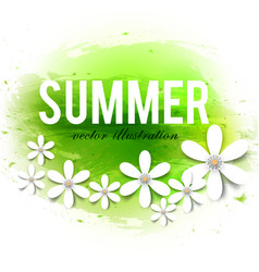 beautiful summer background with white flowers vector image