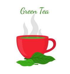 green tea - asian drink red cup leaves of matcha vector image