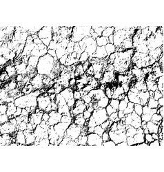 Texture of black and white withered earth with vector