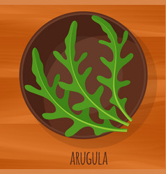 arugula flat design icon vector image vector image