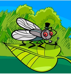 housefly insect cartoon vector image