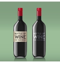 Transparent realistic glass bottles for wine vector image