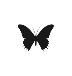 butterfly silhouette logo icon design template vector image