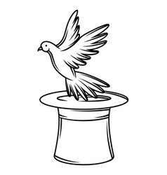 magician cylinder from which pigeon fly out trick vector image