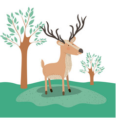 moose animal caricature in forest landscape vector image
