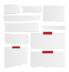 Set of gray torn note papers with adhesive vector