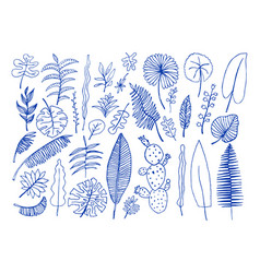 set of hand-drawn bright tropical plants vector image