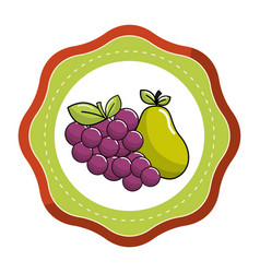 sticker grape and pear fruits icon vector image vector image