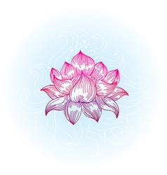 lotus in hand-drawn style - vector image vector image